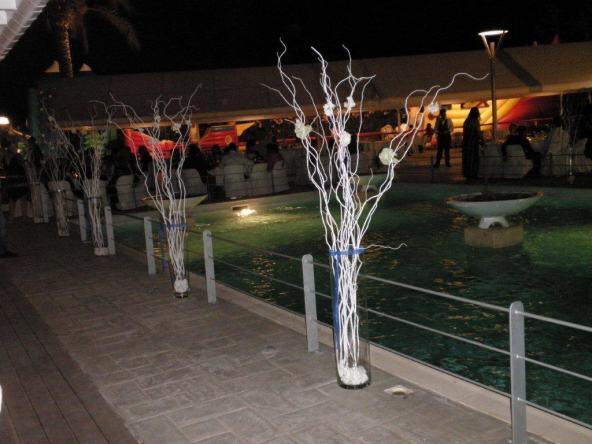 events_in_style_organosi_gamos_vaftisi_11