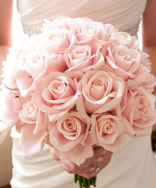 roz-nifiki-anthodesmi_11