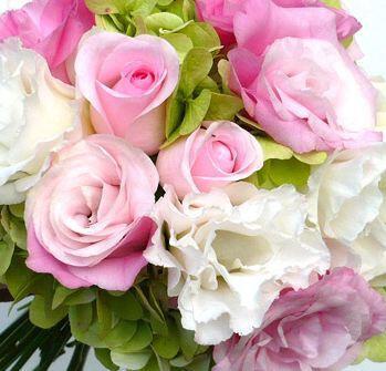 roz-nifiki-anthodesmi_13
