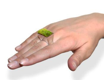green wedding ring - Μην ξεχάσετε να ποτίστε το δαχτυλίδι σας!