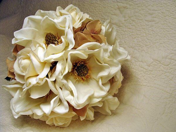 magnolia_anthodesmi-gamos