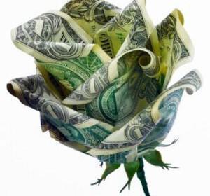moneyflower 300x280 - Λουλούδια γάμου : Πώς να μην ξοδέψετε μια περιουσία!