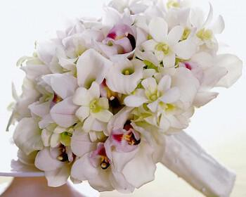 orxidea mpouketo nifi gamos 350x280 - Ορχιδέες για κομψούς στολισμούς γάμων