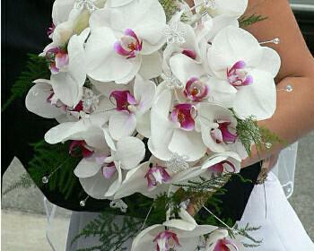 43c0866d6776 Λουλούδια για το γάμο σας. Τι συμβολίζει το κάθε λουλούδι