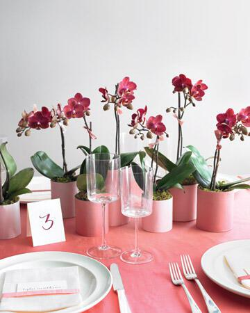 mwd105402 spr10 opener xl Στολισμός τραπεζιών γάμου χρώμα ροζ!