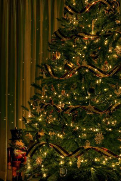 Christmas Tree HDRdsds - Οι «τάσεις» στα Χριστουγεννιάτικα Δένδρα