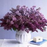 louloudia pasxa diakosmisi centerpiece lilacs xl 160x160 - Πασχαλινή διακόσμηση : Πασχαλιά η μαγευτική…