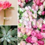 wedding flower inspiration peonies ranunculus succulents  full 160x160 - Τα λουλούδια στο γάμο: Παιώνιες & Νεραγκούλες