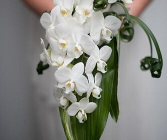 nifiki anthodesmi 5 333x280 - Χειμωνιάτικα λουλούδια για το νυφικό μπουκέτο