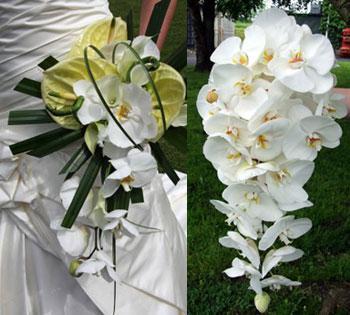 orxidees phalaenopsis anthodesmi nifi ανθοδέσμη στολισμό ορχιδέες νύφη γάμο